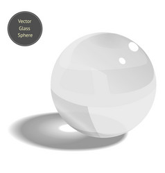 glass sphere isolated on white background vector image vector image