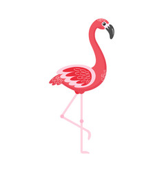 flamingo standing with raised foot bird vector image