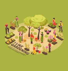 gardening isometric infographics vector image