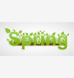 paper sticker spring text with green leaves vector image