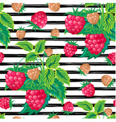 seamless pattern with raspberry on strips summer vector image