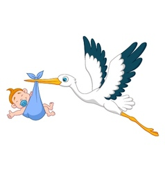 Stork with baby boy cartoon vector