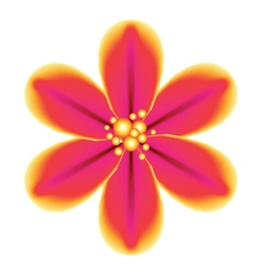Pink Tropical Flower vector image