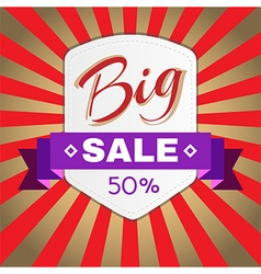 Big Sale Promotion Flyer vector image