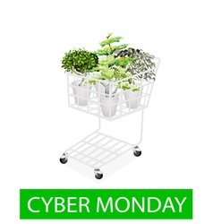 Green Trees in Cyber Monday Shopping Cart vector image