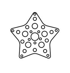 Seastar icon image vector