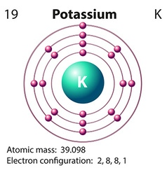 Diagram representation of the element potassium vector image