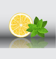 lemon and mint reslistic on vector image