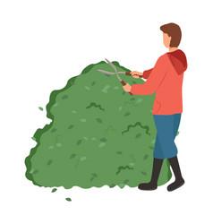 Professional gardener man shaping plant vector
