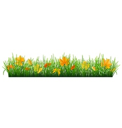 fallen leaves in grass vector image
