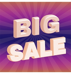 Big Sale 3D Promotion Flyer vector