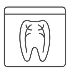 Dental xray thin line icon tooth xray vector