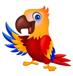 Macaw bird carton waving vector image