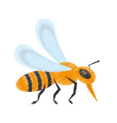 drawing bee insect flower pollen vector image
