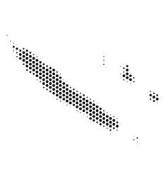 Hexagon new caledonia islands map vector