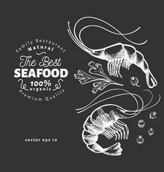 prawns hand drawn seafood on chalk board vector image