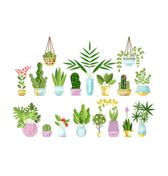 Set of flat style colorful houseplants in pots vector