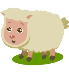 Baby Sheep Isolated vector image