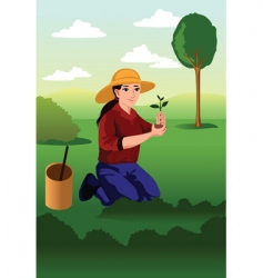 tree planting vector image vector image