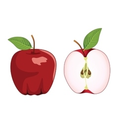 Red apple whole and half apple set vector image