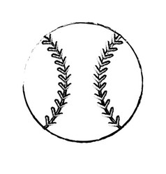 baseball sport ball image sketch vector image
