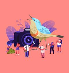 Birding ornithology concept ornithologists vector