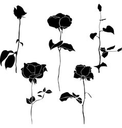 Black and white collection of rose icons vector