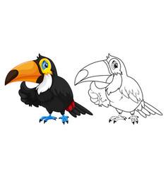 Doodle animal for toucan bird vector