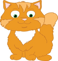 Orange Kitten vector