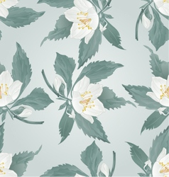 Seamless texture jasmine twig flower and buds vector