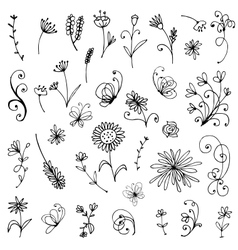 Sketch of floral elements for your design vector
