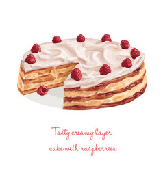 tasty creamy layer cake with raspberries vector image