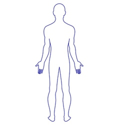 naked standing man vector image