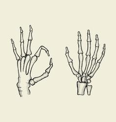 set of skeleton hand vector image