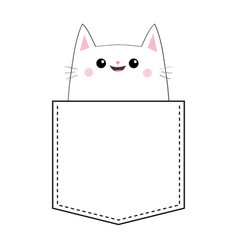 cat in the pocket doodle linear sketch pink vector image