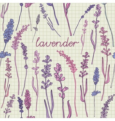 Lavender pattern background vector