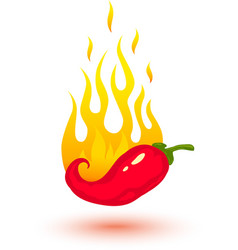 Red chili fire vector