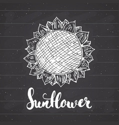 Sunflower sketch with lettering vintage label vector