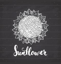 sunflower sketch with lettering vintage label vector image