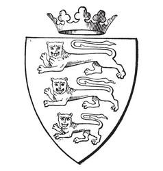 Three lions passant gardant have a escutcheon vector