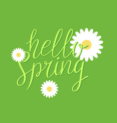 hello spring modern hand drawn lettering vector image vector image