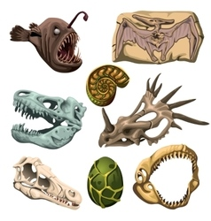 Ancient fossil animals fish and egg vector image vector image