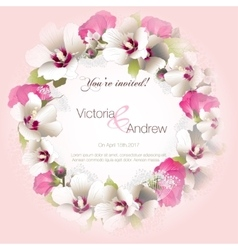 Greeting card with flowers mallow vector image vector image