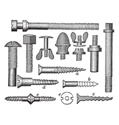 Collection of screws used in carriage making and vector