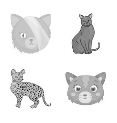 Design of pet and sphynx sign collection vector
