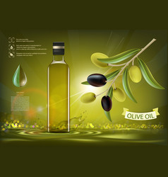 glass bottle with oil vector image