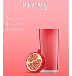 pomegranate fresh juice concept background vector image