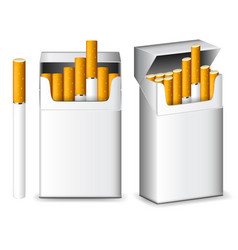 pack of cigarettes isolated on white vector image
