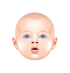 baby face isolated on white vector image