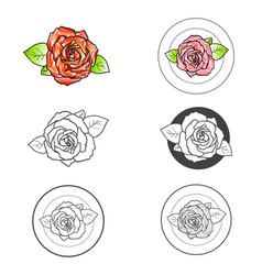 rose flower different logo design set vector image